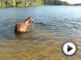 girl loses horse in water filmed for Twombly …