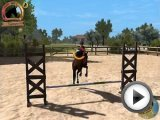 Horse Star - Show Jumping