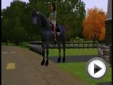 Sims 3 Pets: A girl and her horse